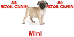 Perros Mini