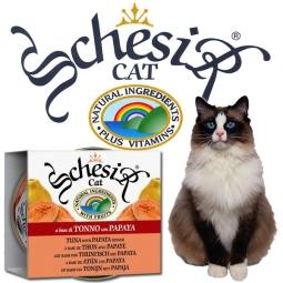 Schesir Cat