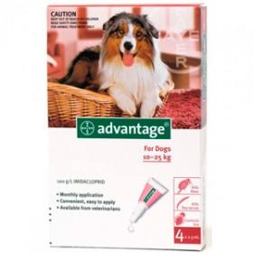 Advantage 250 Perros desde 10 Kg e inferior a 25 Kg
