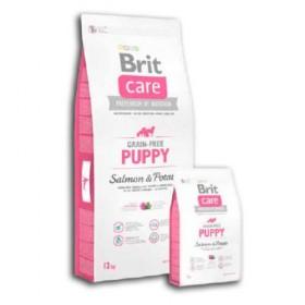 Brit cuidado do filhote de cachorro Grain Salmon gratuito e batata