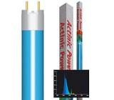 Fluorescente Actinic Power T8 Fósforo Luz Azul Actínica