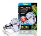 Halógeno Basking Spot Luz Solar