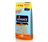 ADVANCE Maxi Adulto 14kg + 4kg gratis