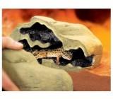 Cueva Magnética Para Reptiles Exo Terra