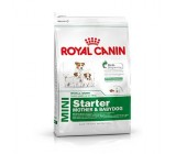 Royal Canin Starter Mini
