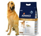 Advance Labrador Retriever Adulto