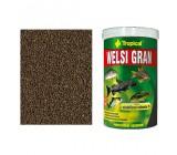Peixe Tropical Food Granulados Welsi Grande Gato