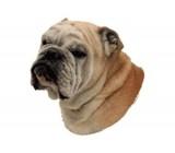 Bulldog Inglês Etiqueta