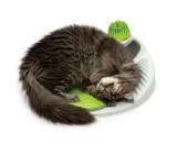 Catit Senses 2.0 Wellness Center Conjunto Relaxante Catnip