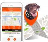 Coleira GPS Para Cães