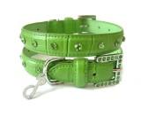 Collar Verde Cocodrilo *