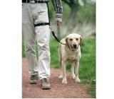 Correa paseo de perros junto a pierna