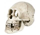 Cráneo Pirata, 15 cm