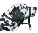 Bozal dog control MOLY