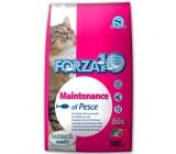 Forza10 Mantenimiento Para Gatos Con Pescados