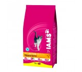 Iams Senior & Mature con pollo