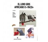 El loro gris africano o