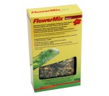 Lucky Reptile Flower Mix Hisbisco