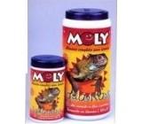 Moly Iguanas