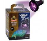 Bombilla Glow Luz de Luna 100W