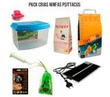 Pack Cria Ninfas Psittacus