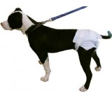 Pañales Higiénicos de Usar y Tirar Para Perros y Gatos