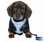 Petral puppy Azul Con Correa
