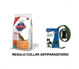 Hill's Feline Optimal Care Con Pollo 5kg + Collar Regalo