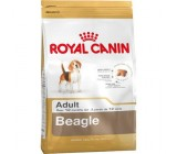 Royal Canin Beagle adulto