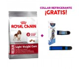 Royal Canin Medium Light + Collar Refrigerante GRATIS