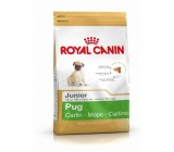 Royal Canin Carlino (Pug) Junior