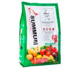 Summum Balance Alimento 100% Natural
