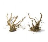 Tronco de Madeira Sunken Root