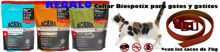 Collar regelo Biospotix Acana gato