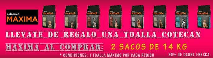 Banner Cotecan Maxima